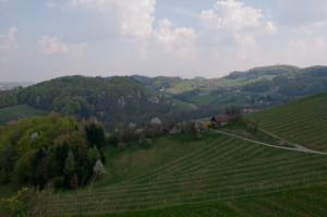 Der Ausblick von der Terrasse führt über den Weingarten Richtung Slowenien.