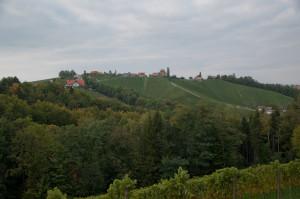 Der Blick über die Weinberge von Sulzthal ist auch bei bewölktem Himmel wunderschön.