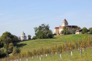 Das Schloss Ehrenhausen mit dem Mausoleum