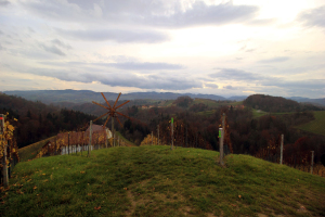 Wunderbarer Aussichtspunkt vorm Weingut Brenner am Rossberg (Foto: Ulrike Elsneg)