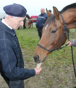 Pferdesegnung, hier mit Pfarrer J. Puntigam (Foto: Ulrike Elsneg)