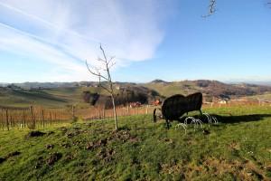 Die wunderbare Aussicht inkl. Steiermark-Herzbankerl