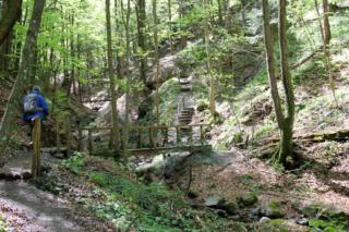 Altenbachklamm Oberhaag (Foto: Ulrike Elsneg)