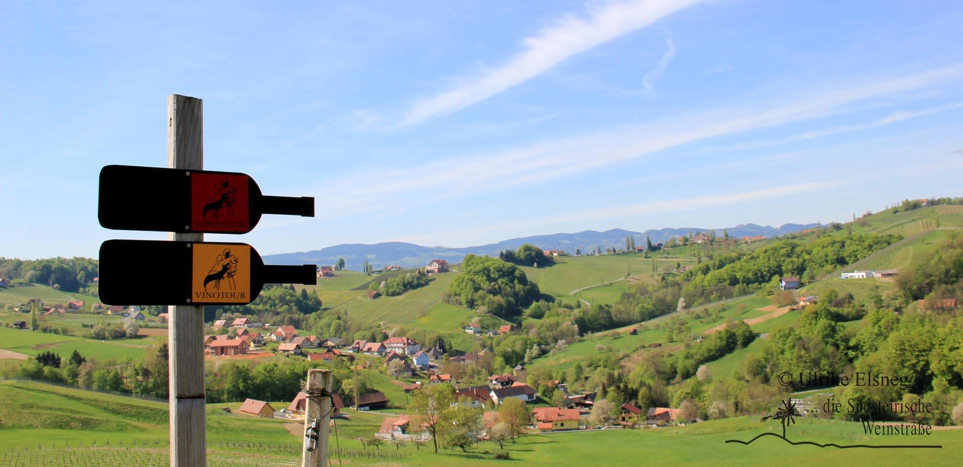 Vinotour Ratsch - Svecina (Foto: Ulrike Elsneg)