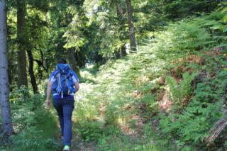 Wandern in Arnfels - Remschnigg (Foto: Ulrike Elsneg)