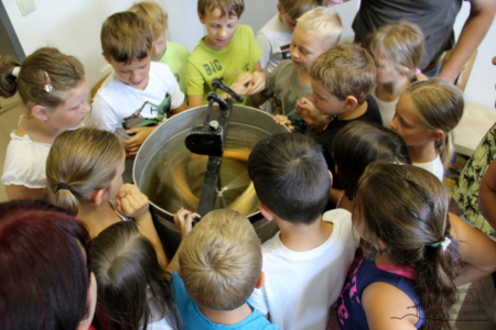 Projekt Bienen VS/Kindergarten Langegg (Foto: Ulrike Elsneg)