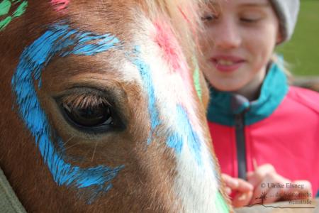 Reitkinder Schnuppertag - Green Hill Ranch (Foto Ulrike Elsneg)