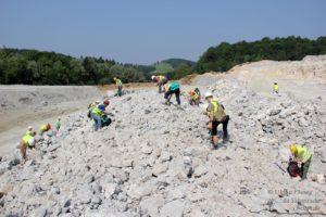 Erlebnis Erdgeschichte - Fossiliensuche in Retznei (c) Ulrike Elsneg TV Die Südsteirische Weinstraße