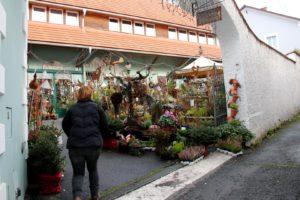 hochstrasser-ehrenhausen-c-ulrike-elsneg-tv-die-suedsteirsiche-weinstrasse-6